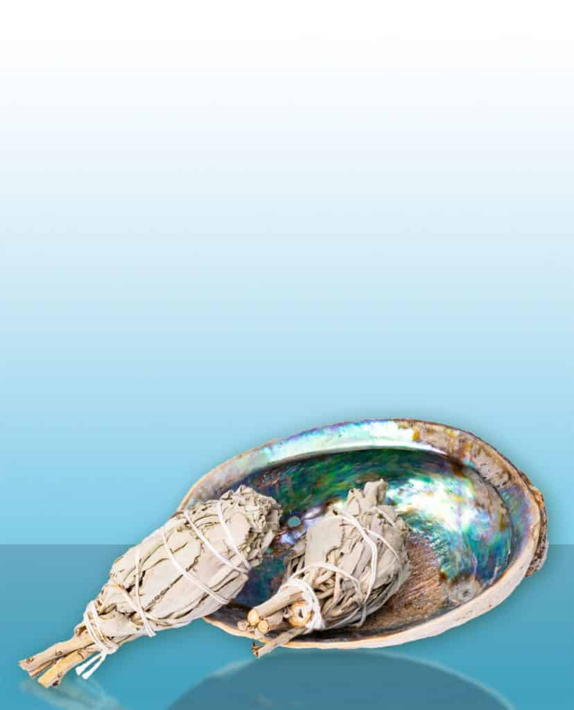 baking-soda-nl-2saliebundeltjes-met-abaloneschelp
