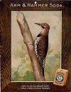 merchant-card-useful-birds-of-america-first-serie