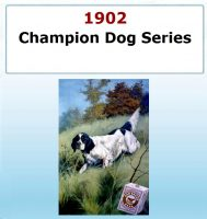 Champion Dog Series