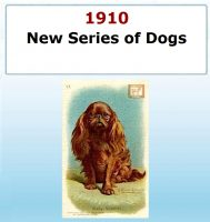 New Series of Dogs
