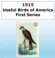 Usefull Birds of America - First Series