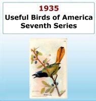 Usefull Birds of America - Seventh Series