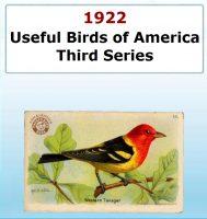 Usefull Birds of America - Third Series